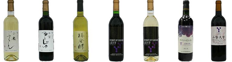 山梨大学 ワイン
